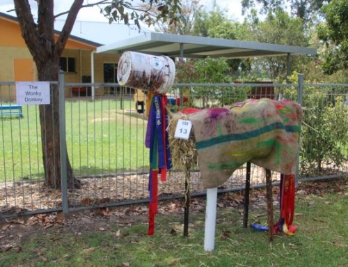 Mary Valley Scarecrow Festival 2015